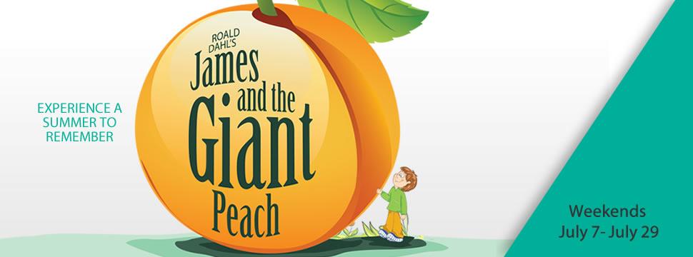 2018-slide-giant-peach-970-360